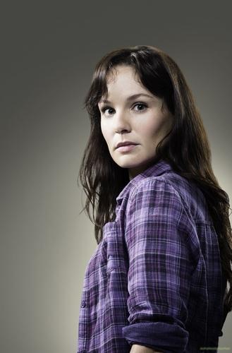 Sarah Wayne Callies as Lori