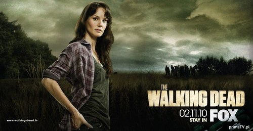 Sarah Wayne Callies as Lori