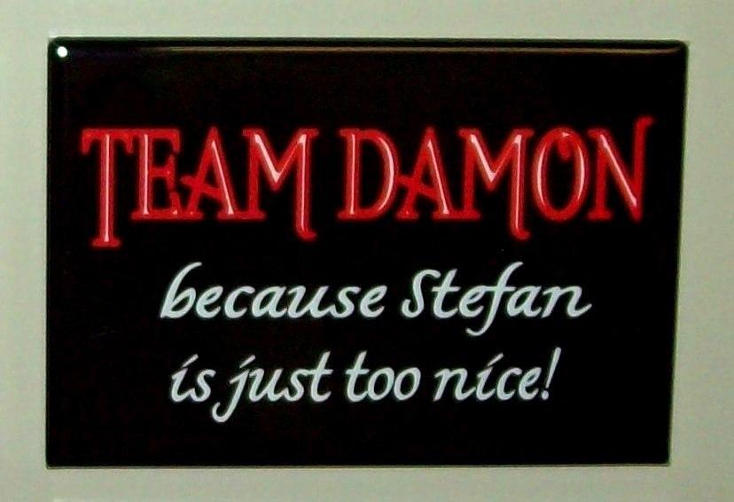 Team Damon Sign - damon-and-stefan-salvatore photo