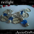 Twlight Bracelet - twilight-series photo