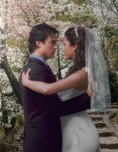 Damon & Elena wallpaper containing a bridesmaid titled Vampire Diaries Wedding Dance