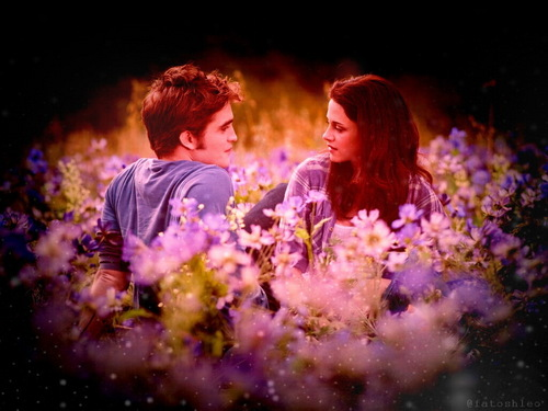 edward and bella fondo de pantalla