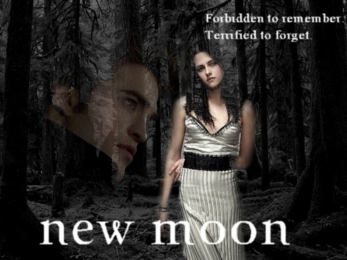new moon poster door kissthespider26