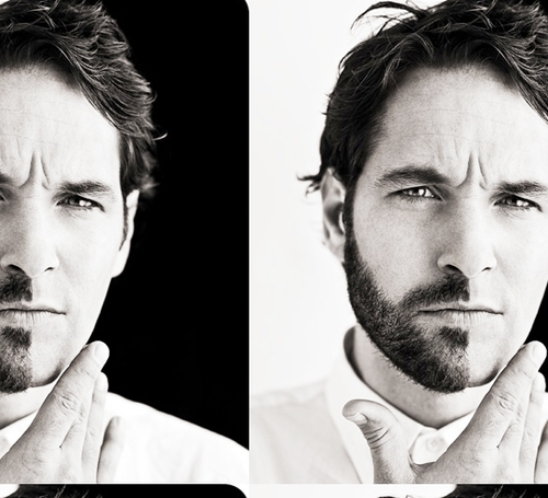 Paul Rudd wallpaper called paul rudd