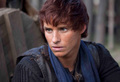 the pillars of the earth - eddie-redmayne photo