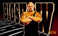 WWE kertas-kertas dinding