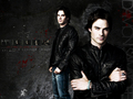 Damon Salvatore Wallpaper  - the-vampire-diaries-tv-show wallpaper