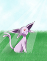 Espeon - eevee photo