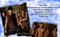 Fan Art - the-quileute-wolf-pack fan art