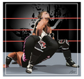HBK vs. HIT MAN - Sharpshooter