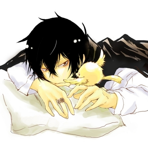 Hibari Kyoya wallpaper entitled Hibari and Hibird