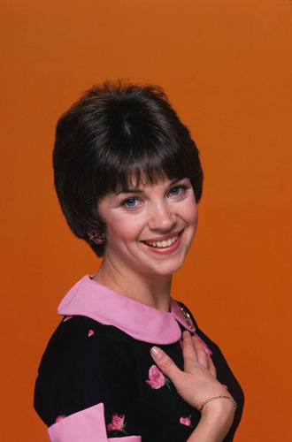 Laverne & Shirley wallpaper probably containing a portrait called Laverne & Shirley