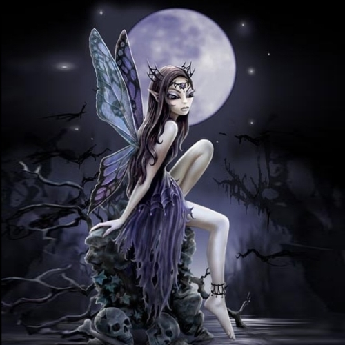 Midnight Fairy