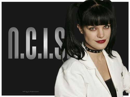 NCIS wallpaper probably containing a portrait entitled NCIS