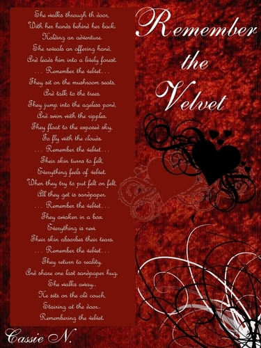 Remember the Velvet (poem)