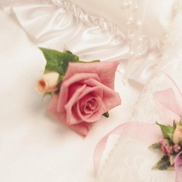 バラ And Romance