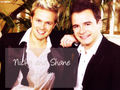 Shnicky - westlife wallpaper