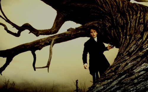 Sleepy Hollow - sleepy-hollow Wallpaper