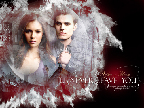 "Stefan and Elena ""I'll never leave you"""