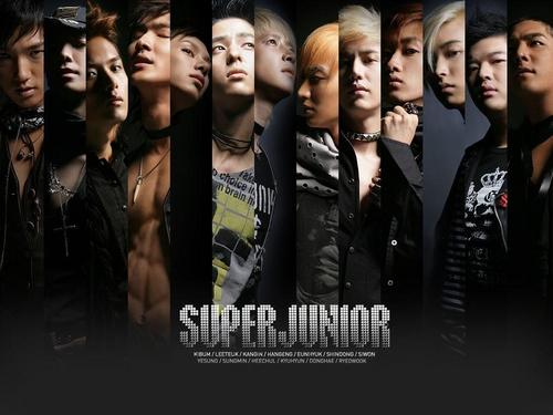Super Junior-Don't Don