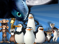 Toothless invades the PoM wallpaper! - penguins-of-madagascar wallpaper