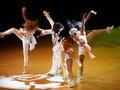 Tour 2010 - so-you-think-you-can-dance fan art