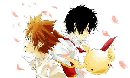 Tsunayoshi and Hibari, Hibird