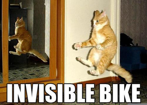 cat on a invisable bike