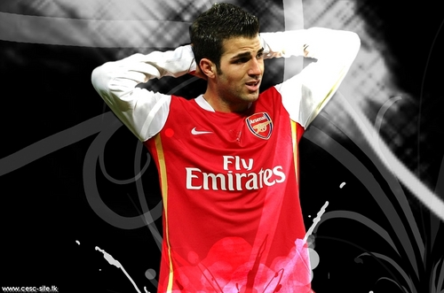 Cesc Fabregas images cesc HD wallpaper and background photos