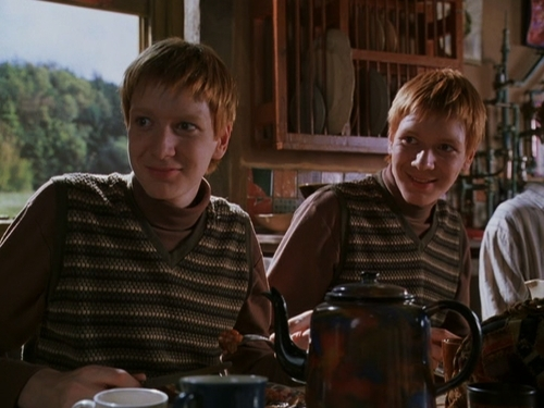फ्रेड and george in chamber of secrets