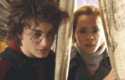 harry and hermioen in 4th tahun