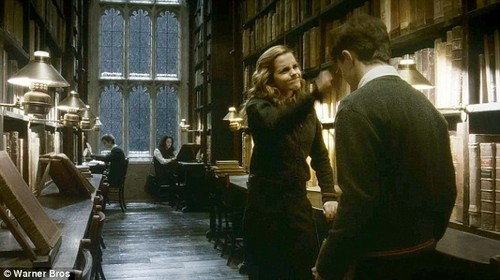 harry and hermioen in 6th tahun