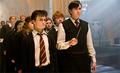 harry and neville in 5th year - harry-potter-movies photo
