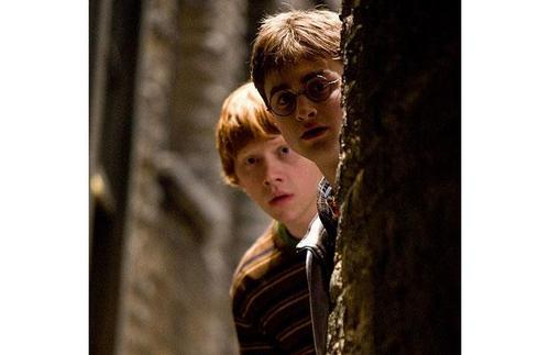 harry and ron in 6th anno