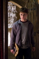 harry in 6th year - harry-potter-movies photo