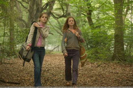 hermione and ginny 4th year