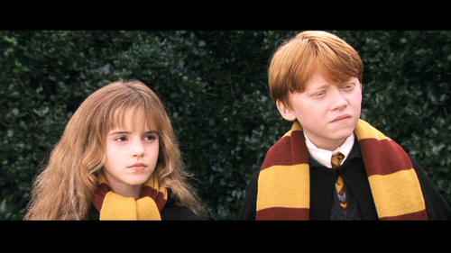 Harry Potter films achtergrond probably with a portrait titled matching scarves