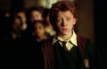 ron in the prisoner of askaban - harry-potter-movies photo