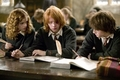 trio in 4th year - harry-potter-movies photo