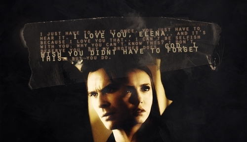 "Damon & Elena wallpaper possibly containing a sign called ""Because he's in love with you."""