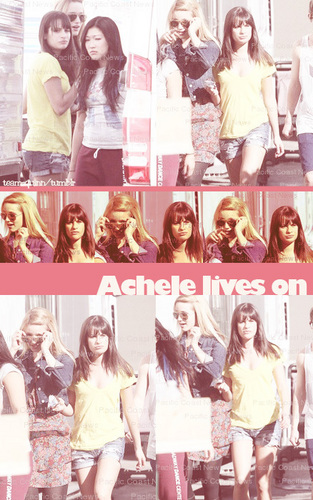 ♥ - lea-michele-and-dianna-agron Fan Art