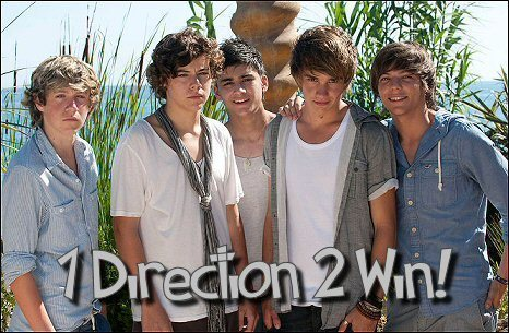 1 direction x