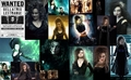 Bellatrix Lestrange wallpaper