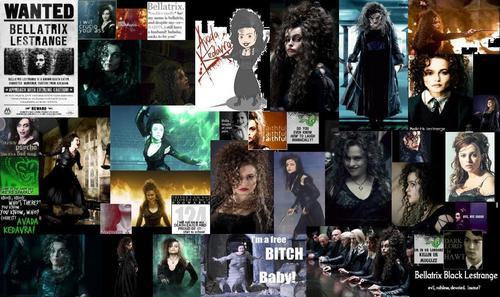 Bellatrix Lestrange 壁纸