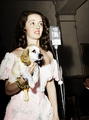 Bette Davis and a dog