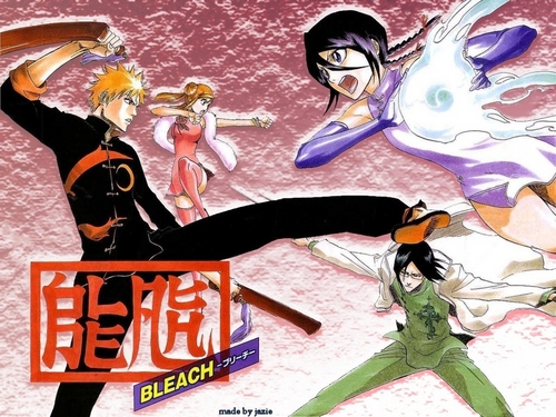 Bleach Combat