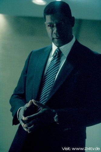Dennis Haysbert as David Palmer
