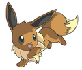 Eevee - eevee photo