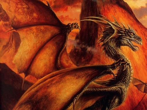 funkyrach01 wallpaper entitled Fire Dragon