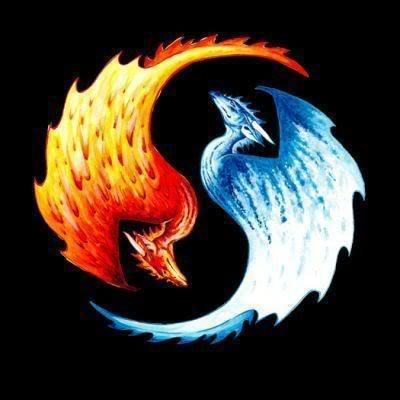 funkyrach01 wallpaper entitled Fire and Ice Dragons